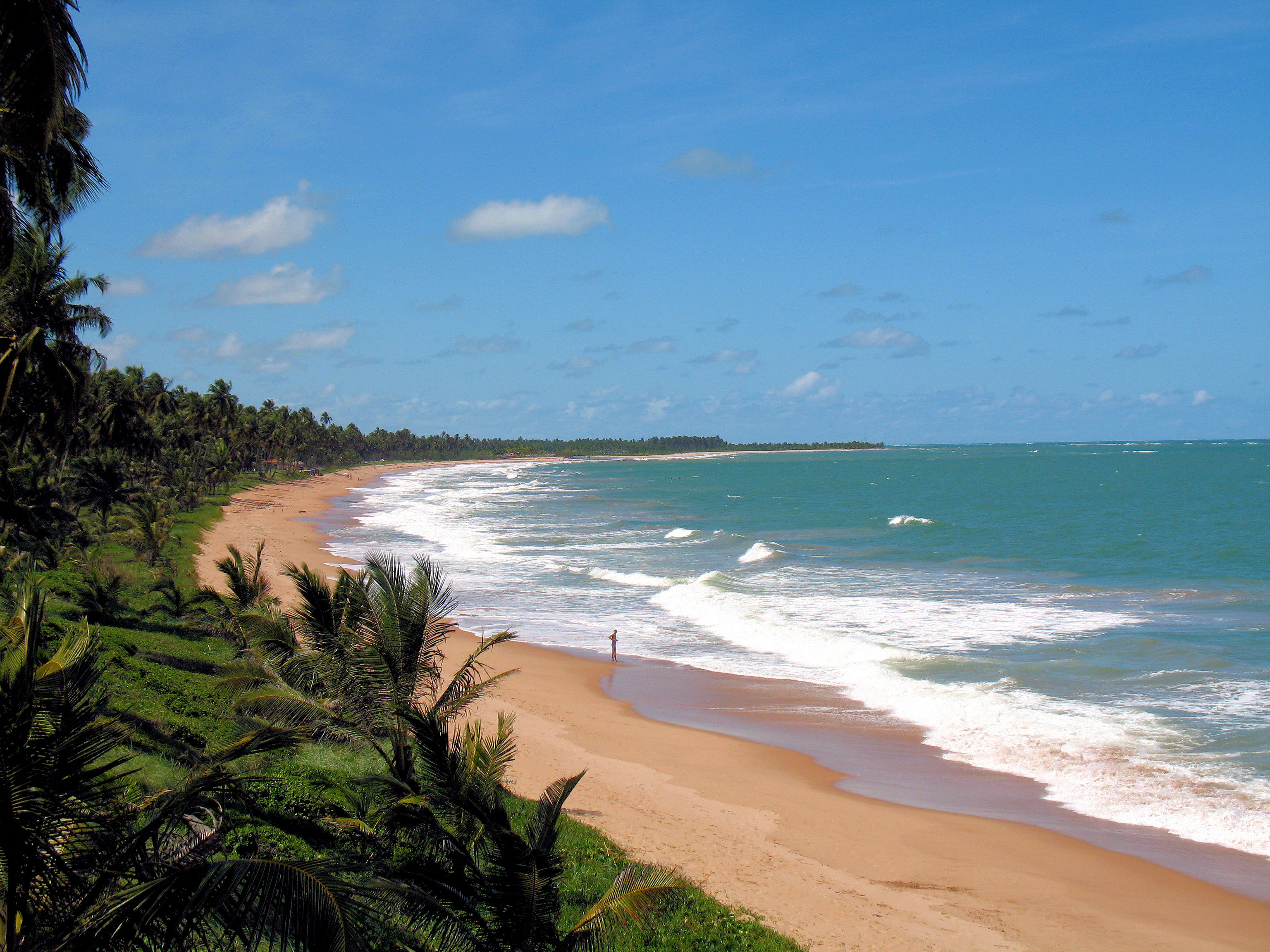 This palm-lined coast starts at the north edge of Maceió and goes northward