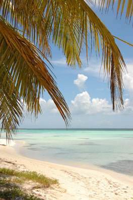 Dominican Republic is traditional Caribbean at a non-traditional price