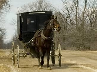 A Mennonite cart