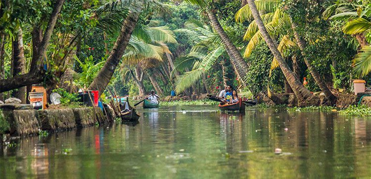 people in wooden boats rowing down a river lined with tropical trees