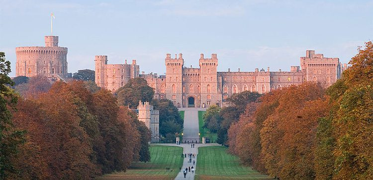 a long tree lined walkway with the windsor castle in the background