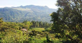 finca-Panama-Chiriqui