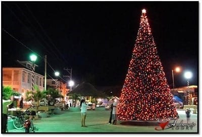 Christmas Tree in San Pedro Town Square