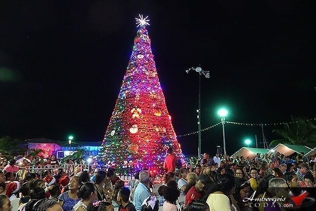 Christmas Tree in Belize