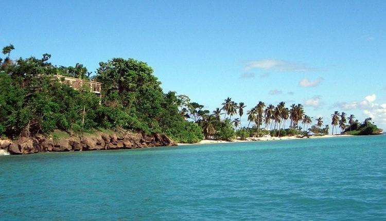 a plam tree studded coastline in Las Terrenas Dominican Republic