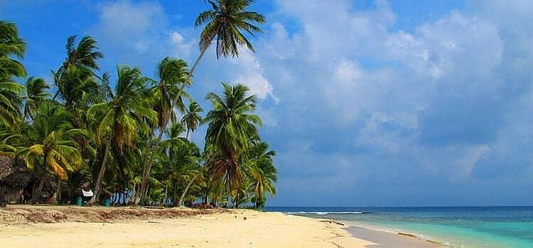 The white sand beach, green palm trees, and blue skies of Panama