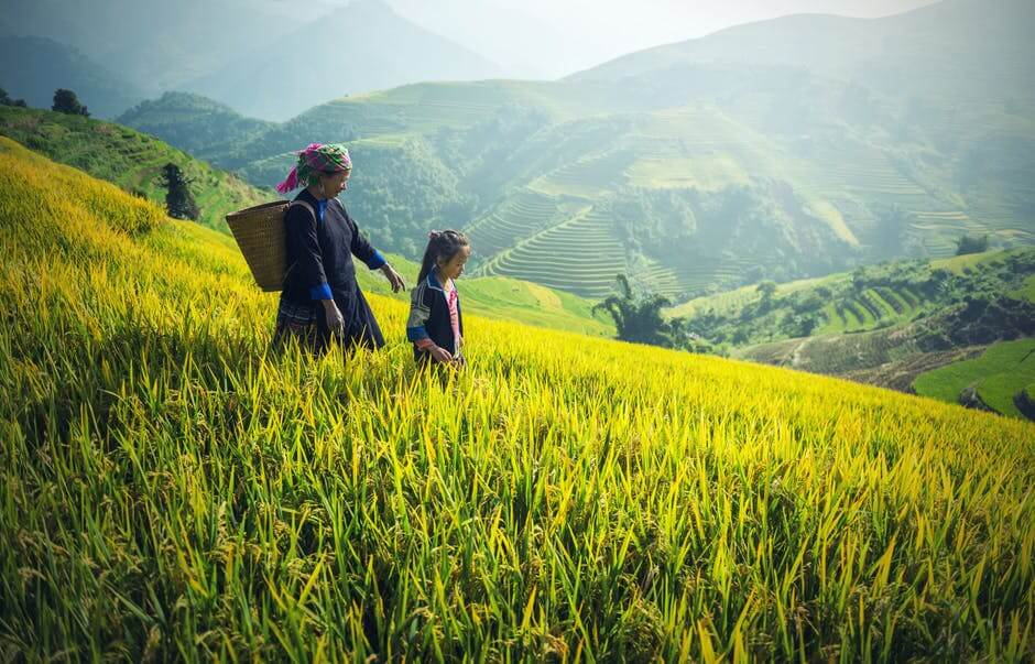 Mother and daughter walking down a hill of rice plantations