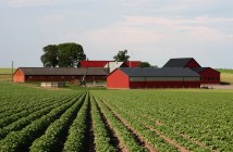 agriculture investment