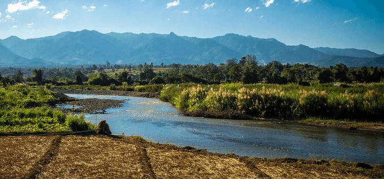 a river cutting through a green landscape