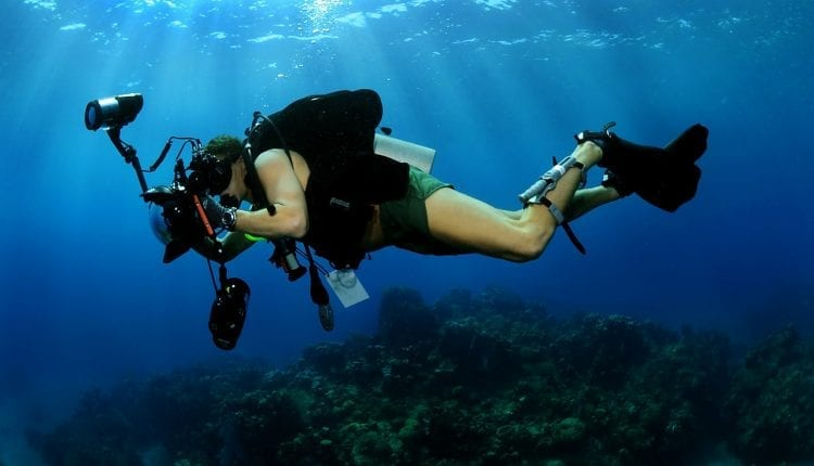 Scuba Diving In Placencia, Belize is one of the most popular pass times you'll have in this wonderful destination.