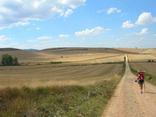Santiago meadow
