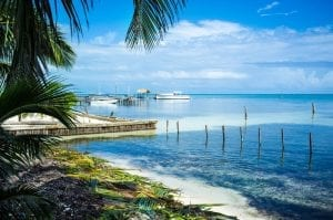 Be3ach in Belize, blue sea, palm trees, and white sand