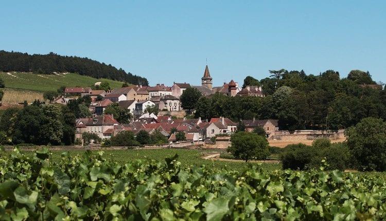 Real Estate Burgundy