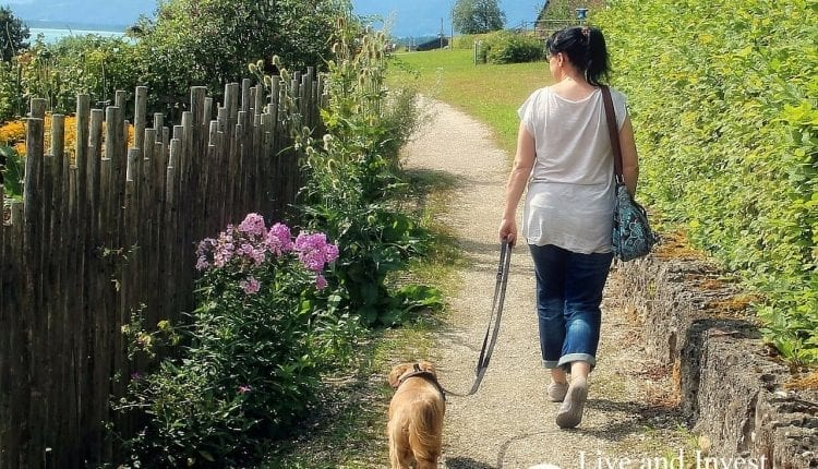 Living And Retiring Overseas With Pets