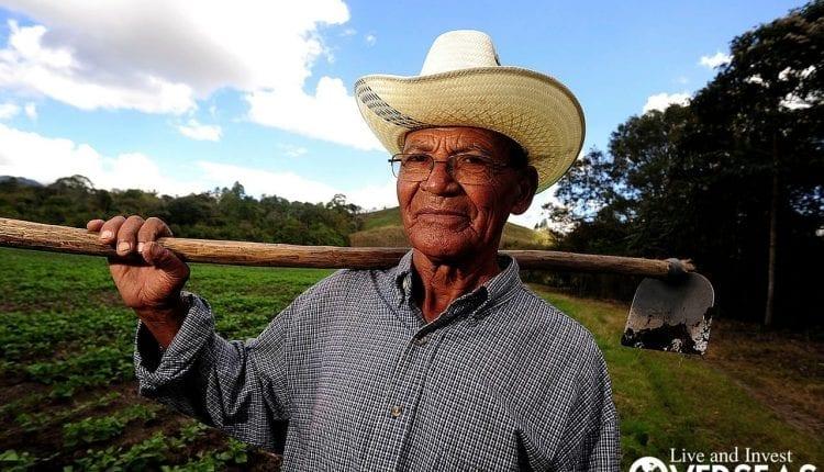 Farming In Belize Maya Spring