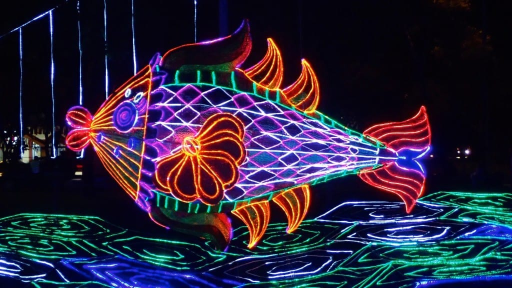 Medellin's Christmas lights and decorations come in many vibrant colors and designs, including; boats, waves, and fish.