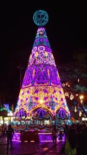 Christmas tree in Medellin, Colombia