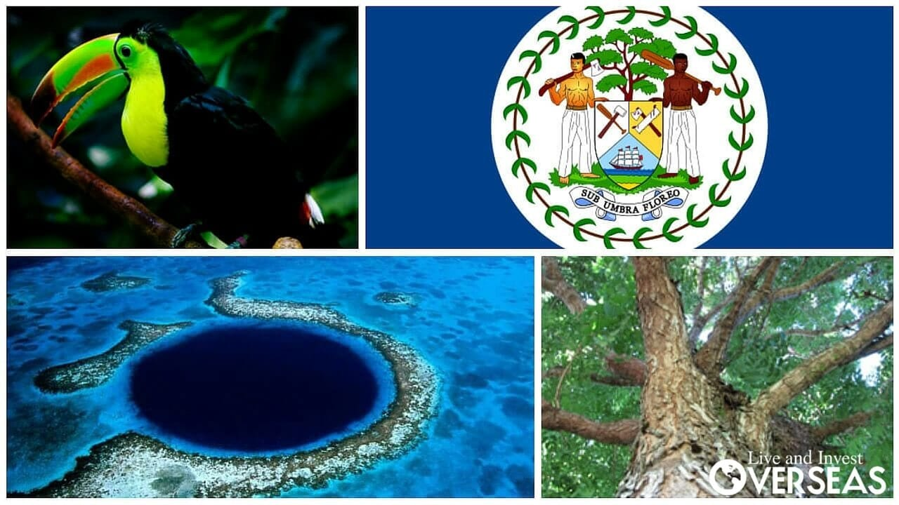 National symbols of belize biocorpaavc Image collections