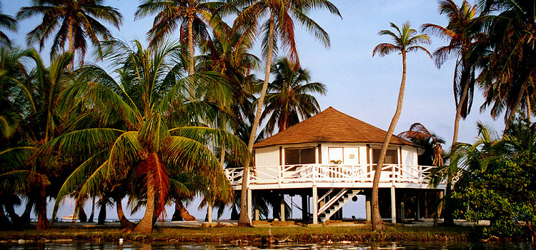 Belize real estate surrounded by palm trees and blue sky