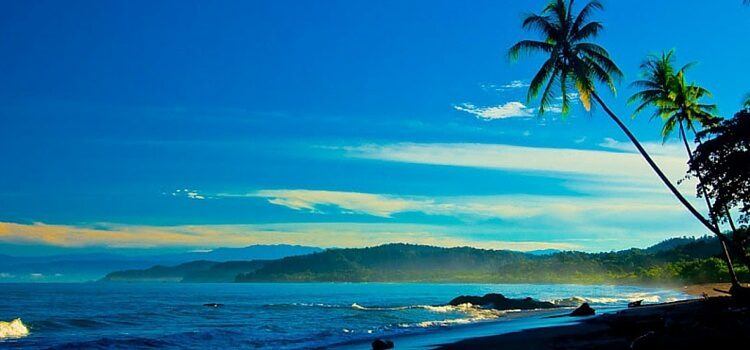 A view of the nice, blue skied, tropical climate in Costa Rica along the beach
