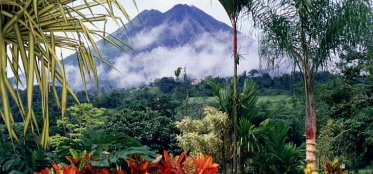 A volcano in Costa Rica with lush green forest and bright orange flowers
