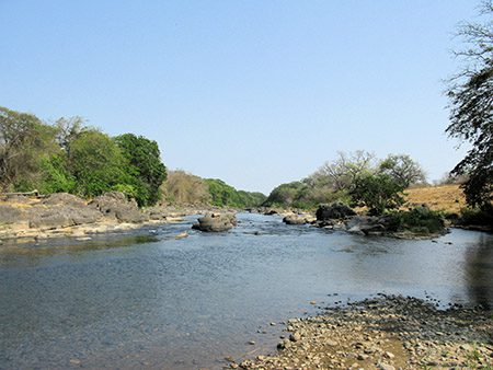 One of several backup water supplies at the Simply Natural Plantation.