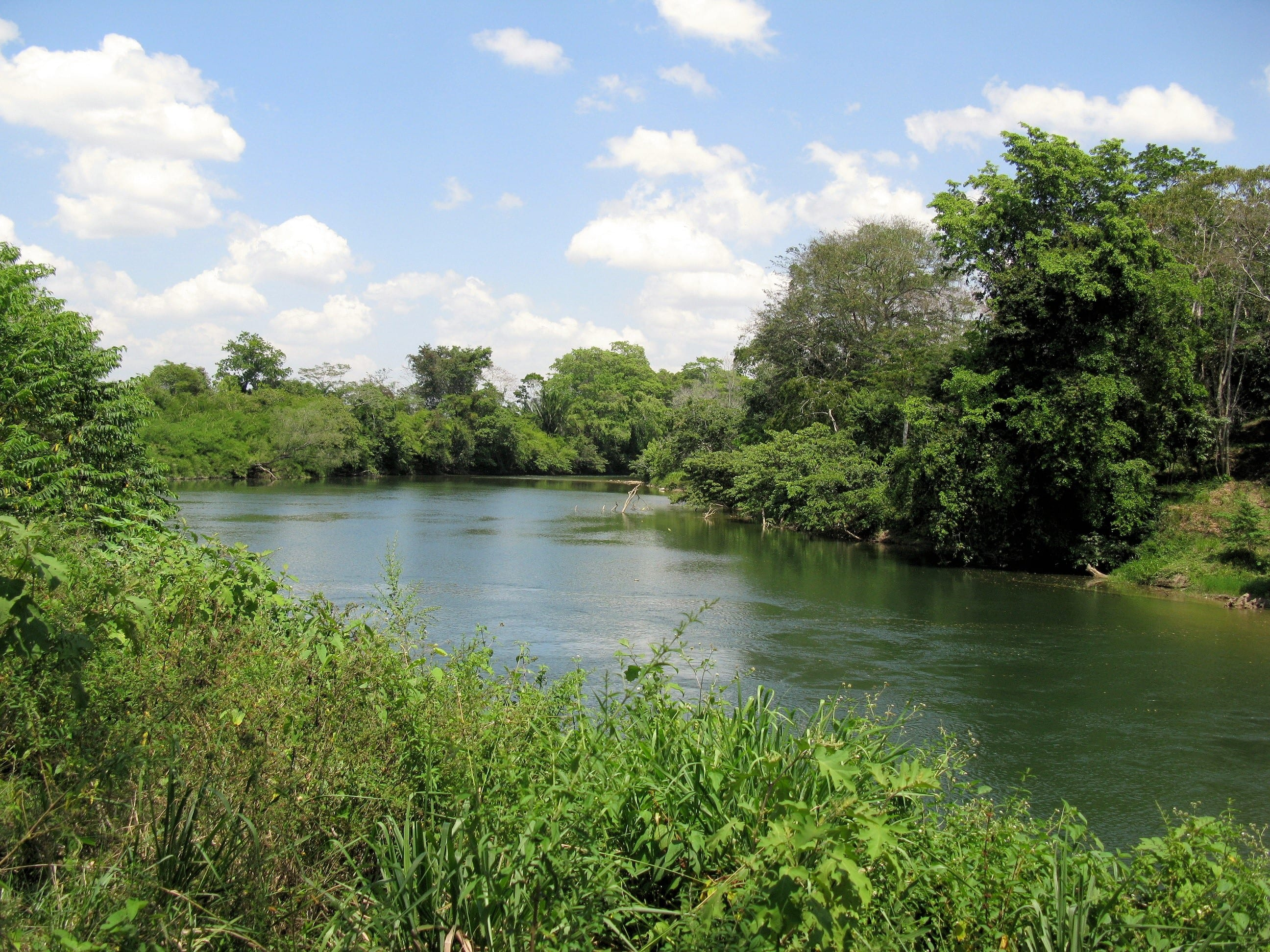 The Belize River