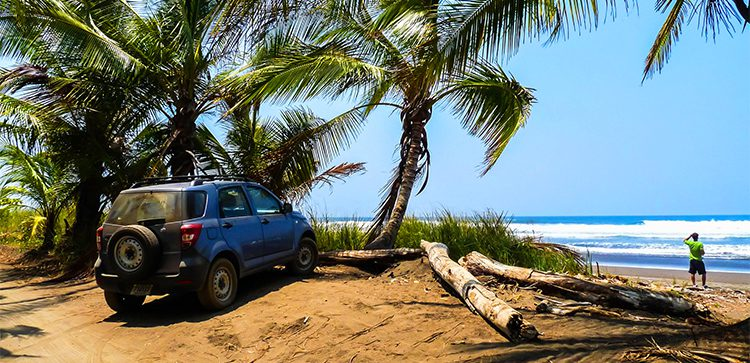 An SUV parked under some palm trees at the beach