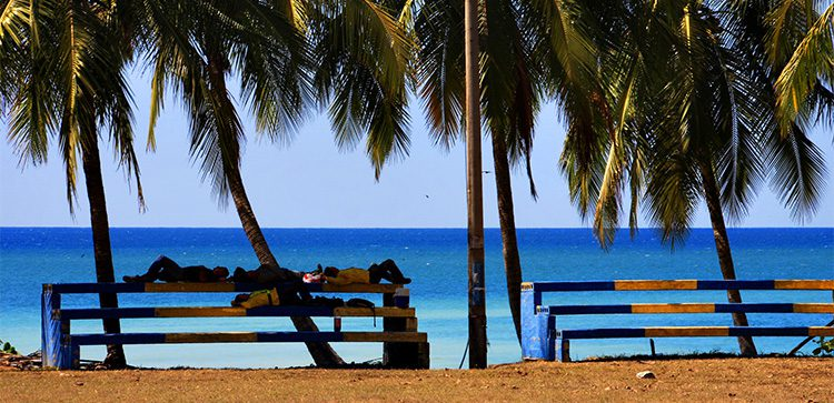soccer players resting on bleachers under palm trees by the beach
