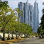 a tree lined street in Panama's upscale costa del este neighborhood