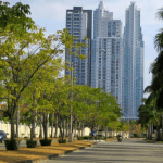 a tree lined street in Panama's upscale costa del este neighborhood