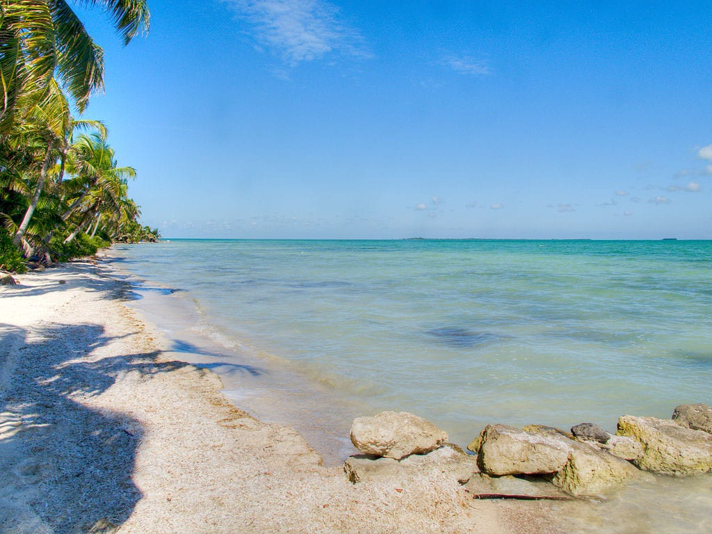 White sandy beach with palm trees and blue water