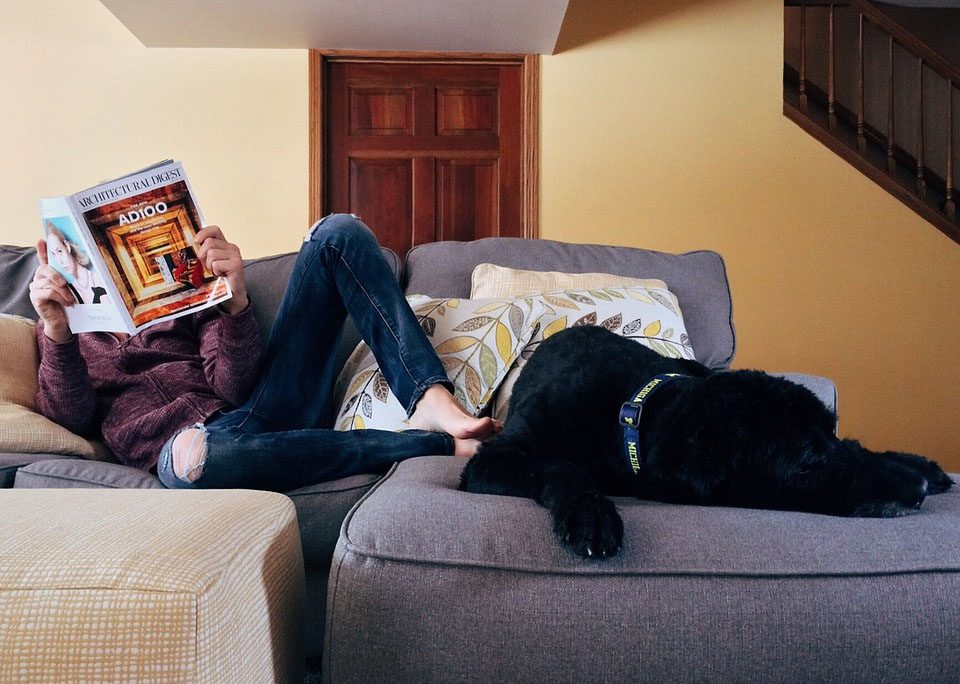 woman and dog sitting on a couch