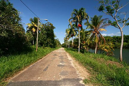 A road in Belize