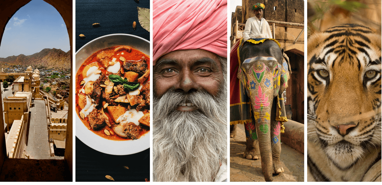 collage of images of india