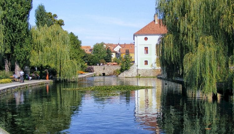homes and sweeingwillow trees reflecting on a pond in Hungary