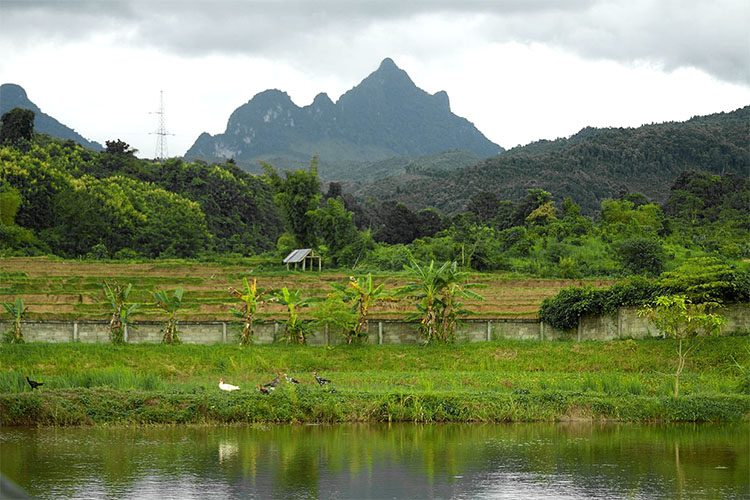 a small hut next to a lake and mountains surrounded by lush green grass