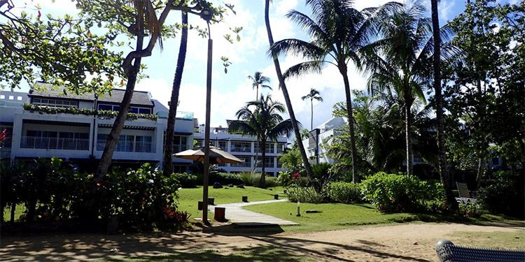 condos with palm trees and landscaped lawns near Playa Bonita