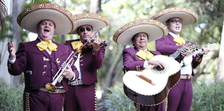 Mariachi musicians dressed in purple charro outfits and performing