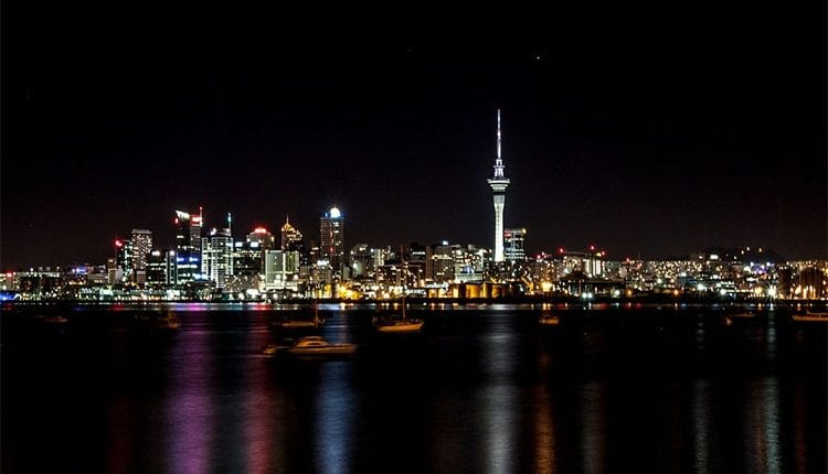 a night view of the skyline