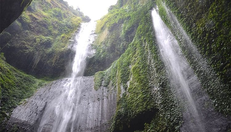 a tall waterfall cave in indonesia with vines growing