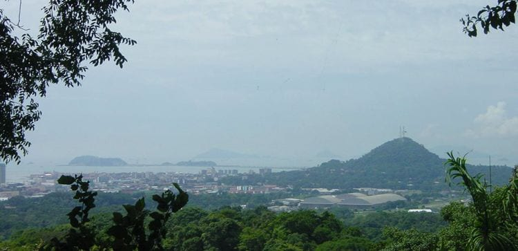 a view of Panama City as taken from a hill in the national metropolitan park
