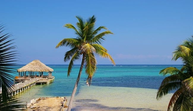 A tropical beach with palm tree, pontoon and blue seas in Belize