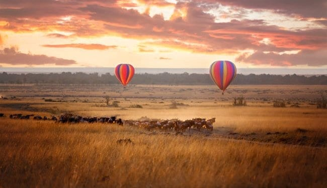 A hot air balloon on the Kenya plains