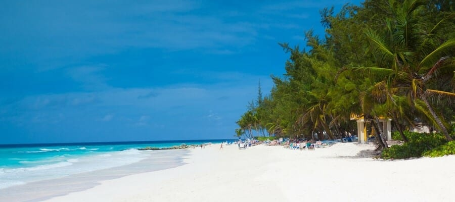 A white-sand beach on the shores of Barbados.