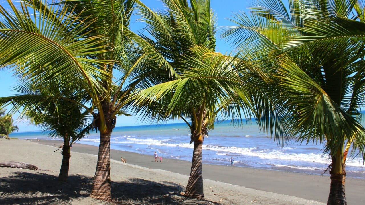 puerto armuelles single women Beachfront property investing | puerto armuelles, panama, is a former banana boom town offering today an appealing and affordable retirement lifestyle.