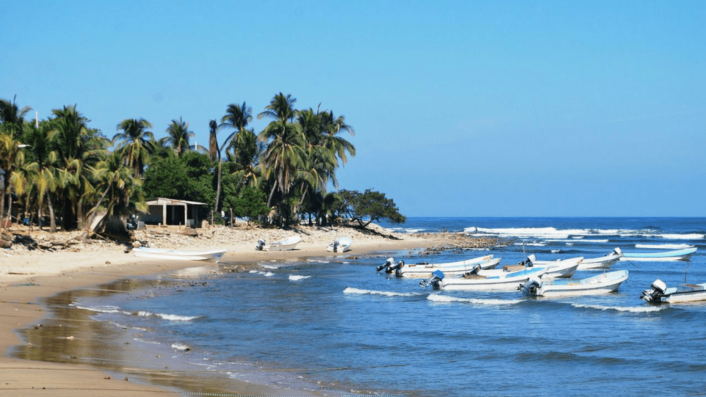 Playa Encuentro Dominican Republic Wiki. Boats on a palm tree lined beach