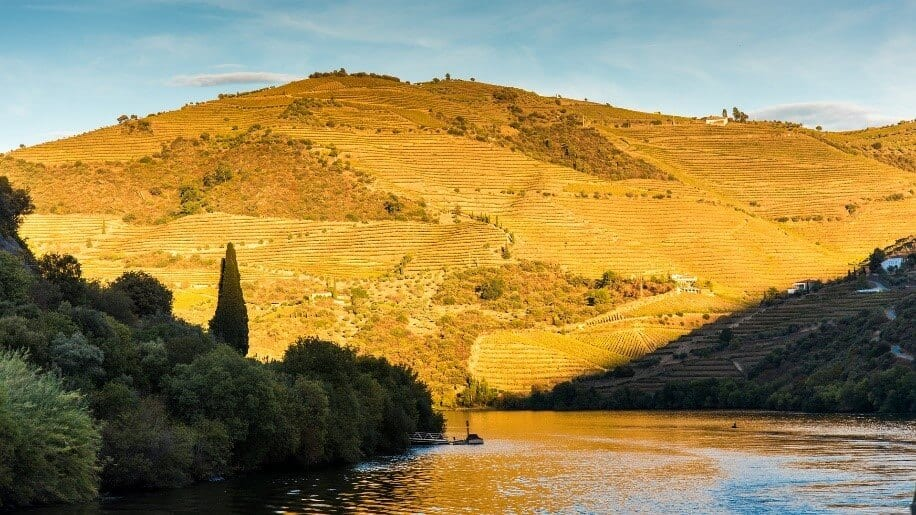 sunset by a river on the douro valley in portugal