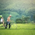 Laotian field and peopl