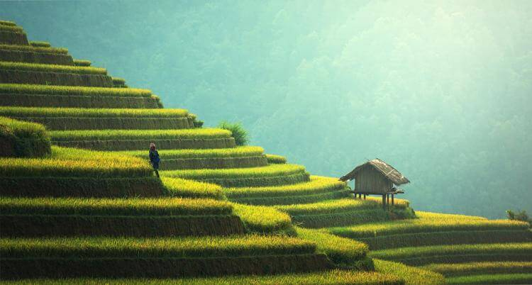 agricultural fields in thailand. One of the best places to buy real estate overseas